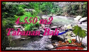 JUAL TANAH di TABANAN BALI 4,550 m2 View kebun dan sungai