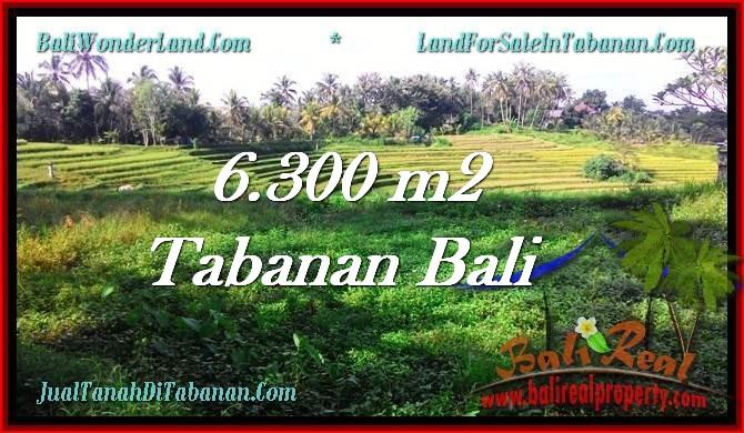 INVESTASI PROPERTI, TANAH DIJUAL MURAH di TABANAN TJTB275