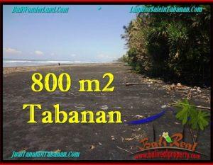 JUAL TANAH di TABANAN 800 m2  Tepi Pantai ( Beachfront ) View Sawah