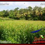 TANAH MURAH di TABANAN BALI DIJUAL 80 Are View kebun dan sungai