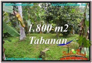JUAL MURAH TANAH di TABANAN 1,800 m2 View kebun dan sungai