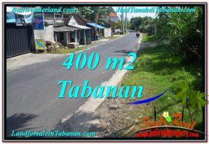TANAH di TABANAN BALI DIJUAL MURAH 4 Are View kebun