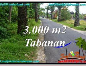 JUAL TANAH MURAH di TABANAN BALI 3,000 m2  View kebun