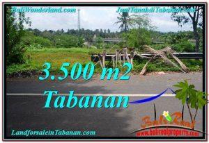 JUAL TANAH MURAH di TABANAN BALI 35 Are di Tabanan Selemadeg