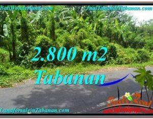 INVESTASI PROPERTY, DIJUAL TANAH MURAH di TABANAN TJTB300