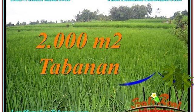 INVESTASI PROPERTI, DIJUAL TANAH di TABANAN BALI TJTB303
