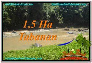 JUAL TANAH MURAH di TABANAN BALI 15,000 m2  View Sawah dan Sungai
