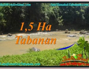 TANAH di TABANAN DIJUAL 15,000 m2 di Tabanan Selemadeg