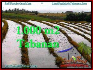TANAH di TABANAN DIJUAL TJTB261