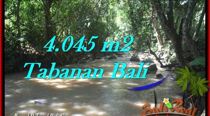 JUAL TANAH MURAH di TABANAN 40.45 Are di Tabanan Selemadeg
