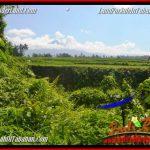 TANAH di TABANAN JUAL MURAH 5,500 m2 View sawah, sungai dan gunung