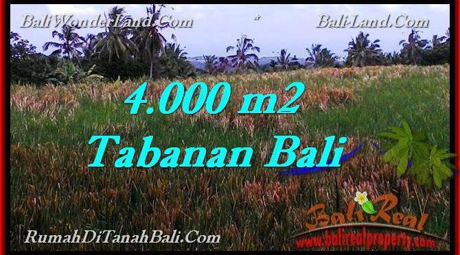 JUAL TANAH MURAH di TABANAN BALI 40 Are di Tabanan Selemadeg