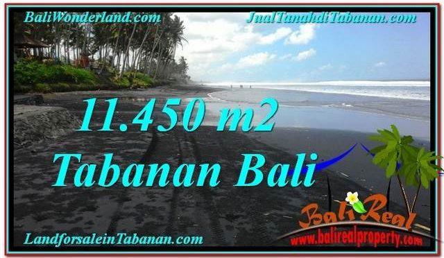 TANAH di TABANAN DIJUAL 11,450 m2 di Tabanan Kerambitan