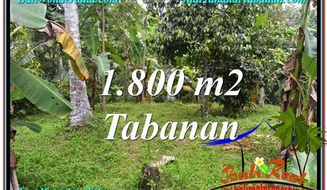 INVESTASI PROPERTI, DIJUAL TANAH di TABANAN BALI TJTB293
