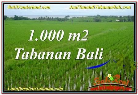 TANAH di TABANAN BALI DIJUAL MURAH TJTB307