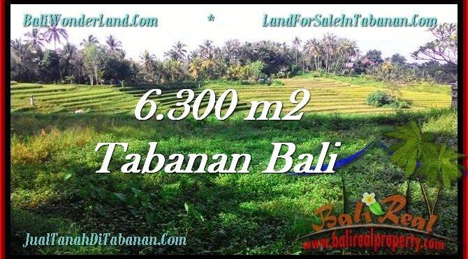 TANAH di TABANAN BALI DIJUAL MURAH TJTB275