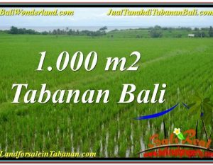 DIJUAL TANAH di TABANAN 1,000 m2 di Tabanan Kerambitan