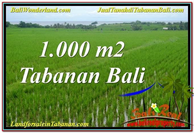 TANAH di TABANAN JUAL MURAH 1,000 m2 View Laut, Gunung dan sawah