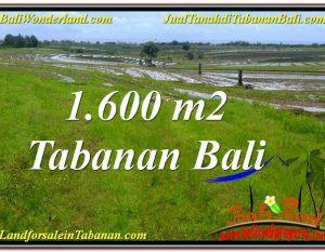 INVESTASI PROPERTY, TANAH MURAH di TABANAN DIJUAL TJTB310