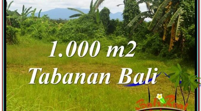 JUAL TANAH MURAH di TABANAN 10 Are View Laut, Gunung dan sawah