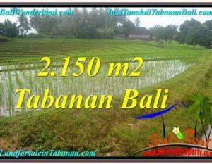 DIJUAL TANAH di TABANAN 2,150 m2 di Tabanan Selemadeg
