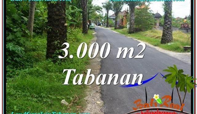 TANAH di TABANAN BALI DIJUAL MURAH Untuk INVESTASI TJTB297