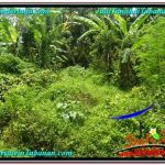 TANAH DIJUAL MURAH di TABANAN Untuk INVESTASI TJTB300