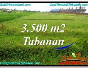INVESTASI PROPERTI, TANAH DIJUAL MURAH di TABANAN TJTB302