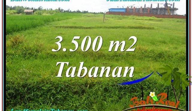 JUAL TANAH di TABANAN 3,500 m2 View Sawah