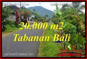 DIJUAL TANAH MURAH di TABANAN BALI 200 Are di Tabanan Penebel