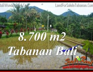 DIJUAL TANAH di TABANAN BALI TJTB316