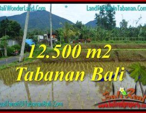 DIJUAL TANAH di TABANAN TJTB317
