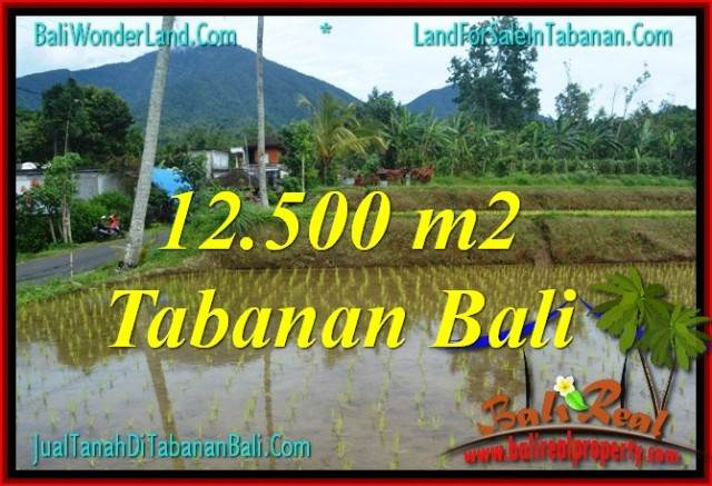 INVESTASI PROPERTY, TANAH di TABANAN DIJUAL MURAH TJTB317
