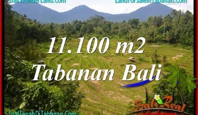 TANAH DIJUAL di TABANAN 11,100 m2 View gunung dan sawah