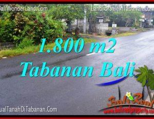 JUAL TANAH MURAH di TABANAN BALI 1,800 m2 di Tabanan Kota