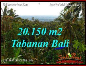 TANAH MURAH DIJUAL di TABANAN BALI Untuk INVESTASI TJTB322