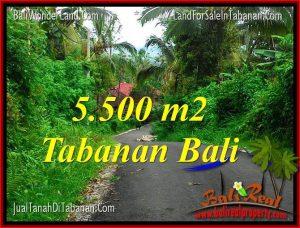 DIJUAL MURAH TANAH di TABANAN Untuk INVESTASI TJTB323
