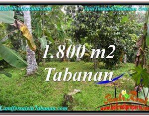 TANAH di TABANAN BALI DIJUAL MURAH 1,800 m2  View kebun dan sungai