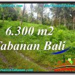 TANAH DIJUAL di TABANAN BALI 6,300 m2 View kebun
