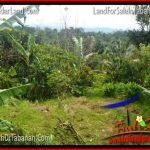 DIJUAL TANAH MURAH di TABANAN BALI 20,000 m2 di Tabanan Penebel