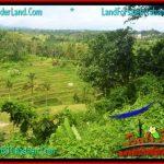 TANAH JUAL MURAH TABANAN BALI 111 Are View gunung dan sawah