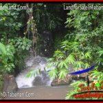 JUAL TANAH di TABANAN BALI 18 Are View sawah