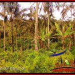 JUAL TANAH di TABANAN BALI 20,150 m2 di Tabanan Penebel