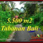 JUAL TANAH di TABANAN TJTB323