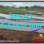 INVESTASI PROPERTY, JUAL TANAH di TABANAN TJTB308
