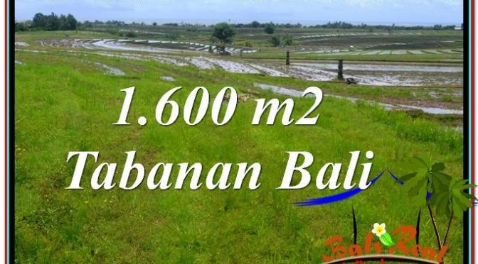 JUAL MURAH TANAH di TABANAN BALI 1,600 m2 di Tabanan Selemadeg