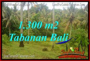 TANAH di TABANAN BALI DIJUAL 1,300 m2  View laut dan sawah