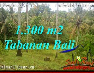 JUAL MURAH TANAH di TABANAN BALI 1,300 m2 di Tabanan Selemadeg