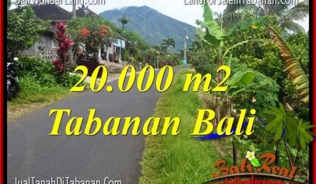JUAL TANAH MURAH di TABANAN 200 Are View gunung dan sawah