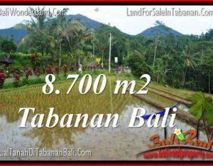 DIJUAL TANAH di TABANAN TJTB316